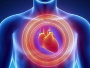 پیش از ورزش سلامت قلبی- عروقی خود را بررسی کنید