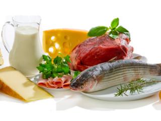 ورزش و پروتئین