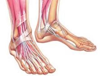 آنچه بهتراست درباره پاها بدانیم