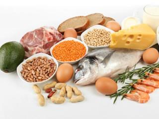 پروتئین و ورزشکاران استقامتی