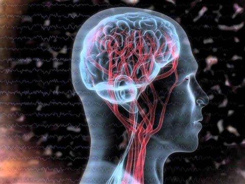 اهمیت سرسختی روانی در طول شیوع بیماری های واگیردار