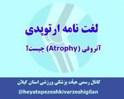 آتروفی (Atrophy)  چیست؟