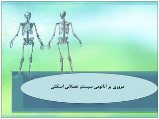 آشنایی با دستگاه سیستم عضلانی-استخوانی بدن