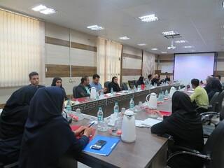 نشست مسئولین کمیته های آموزش هیات های ورزشی هرمزگان