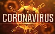 دوره آموزشی کرونا ویروس همراه با آزمون آنلاین