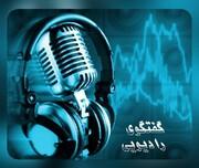 تشریح چگونگی فعالیت باشگاه های ورزشی استان یزد